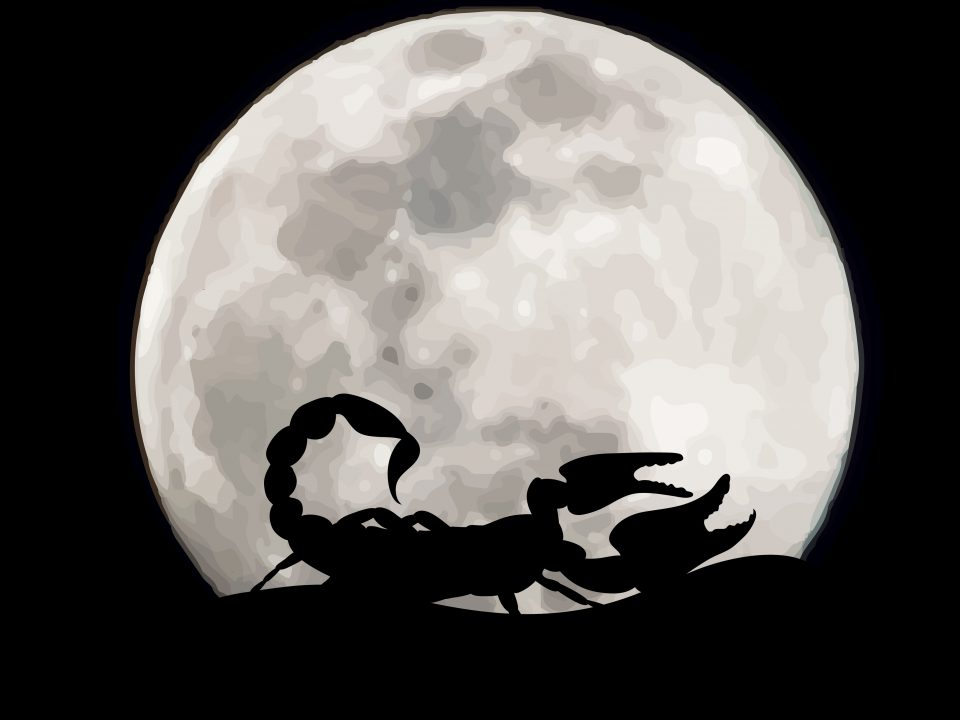 moon in scorpio